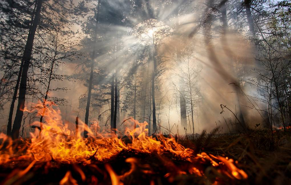 Russian army ordered to tackle massive wildfires