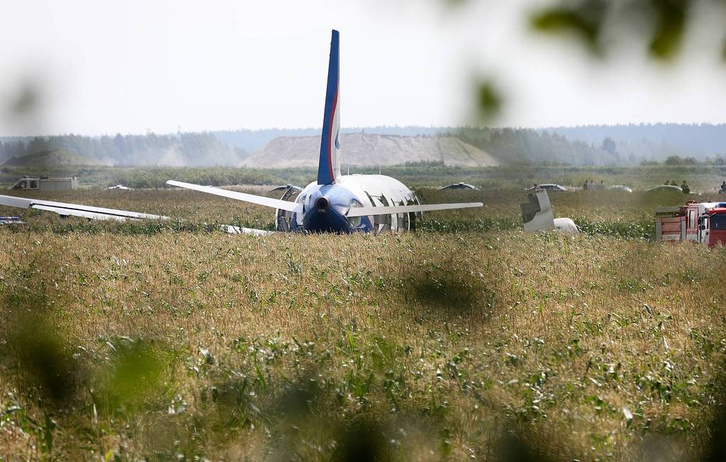 A321 Makes Emergency Landing In Cornfield
