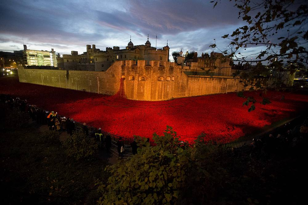 Photo: Ceramic poppy art installation' in the Tower of London. Each poppy represents a British and Commonwealth military fatality from World War I