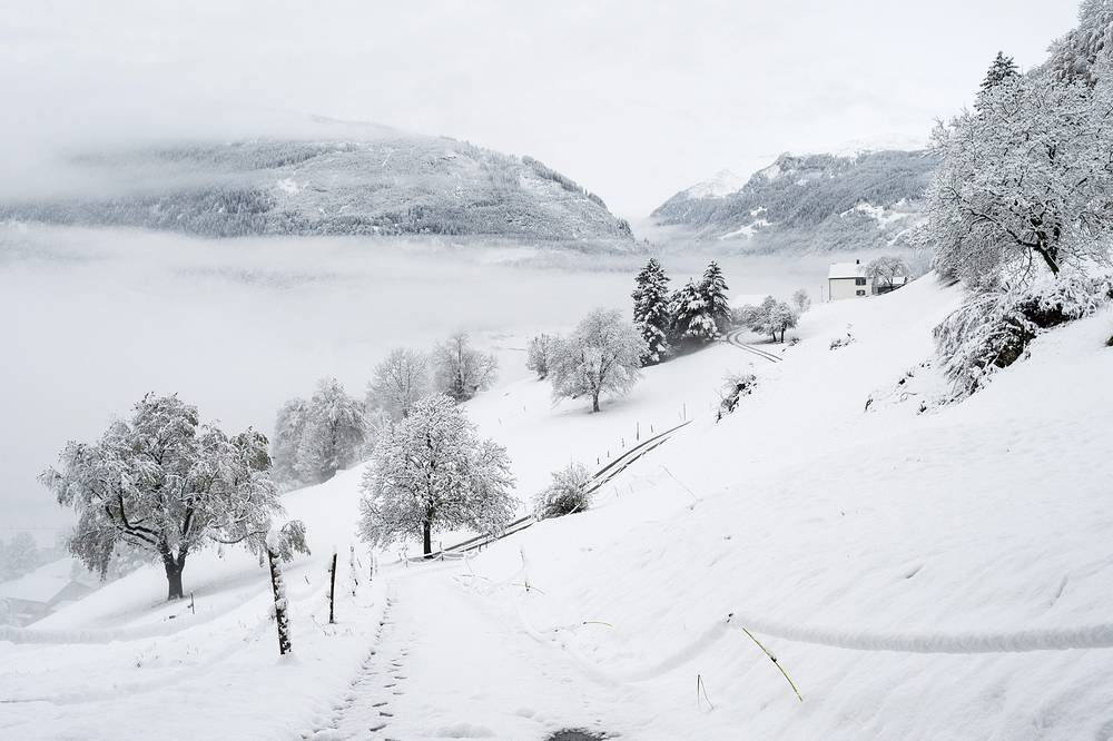 Photo: A view of the snow-covered landscape in Sargans, eastern Switzerland, 06 November 2014