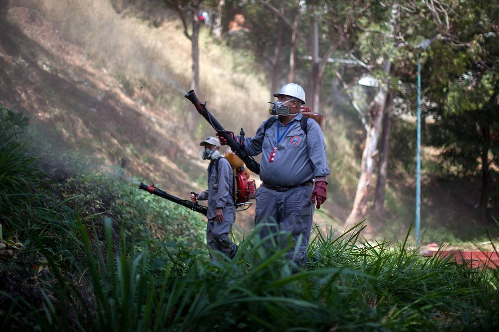 Public health workers participate in a day of fumigation to stop spread of the 'Aedes aegypti' in Caracas, Venezuela, 28 January 2016