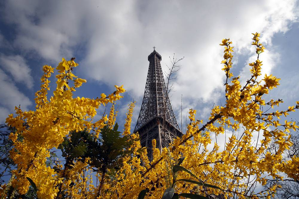 The Eiffel Tower rises from behind blossoming flowers and trees on a Spring day, in Paris, France, March 14