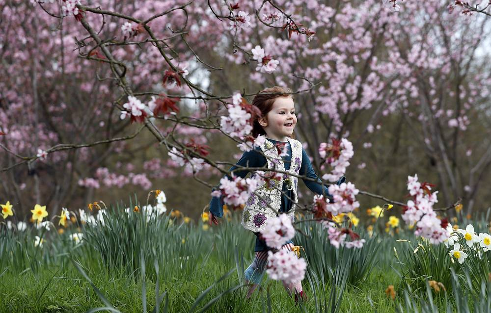 A girl runs under cherry blossom at Royal Botanic Gardens, Kew in London, UK