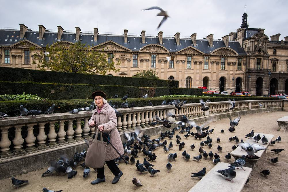 A woman feeds the pigeons in the courtyard of the Louvre Museum in Paris, France, November 21