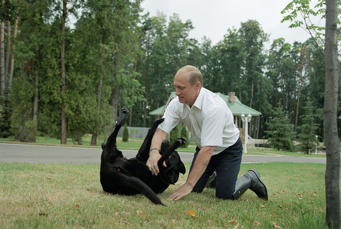 Vladimir Putin also has a 14-year-old labrador retriever Connie Paulgrave given to him in 2000 by then Emergencies Minister Sergei Shoigu