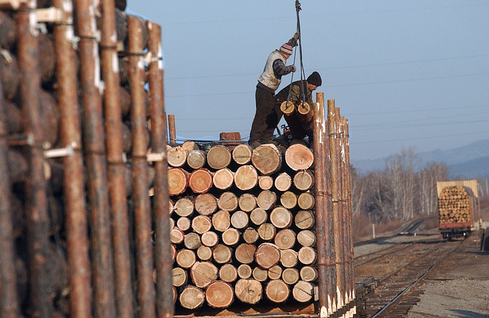 7.08% of Russian exports were wood and wooden products. Photo: Timber is being loaded for shipment to China
