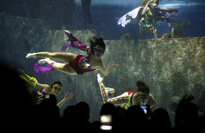 The Turkuazoo aquarium in Istanbul is another one located inside the shopping mall. Visitors at Turkuazoo enjoy more than 30 exhibits. Photo: acrobats perform during an Underwater Acrobatic Circus show at Turkuazoo Aquarium in Istanbul