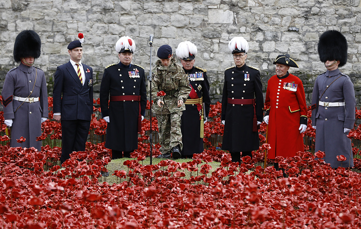 11 November 2014 marks the 96st anniversary of the end of World War I. Photo: Remembrance day ceremony into the ceramic poppy art installation by artist Paul Cummins entitled 'Blood Swept Lands and Seas of Red' in the dry moat of the Tower of London in London, November 11, 2014