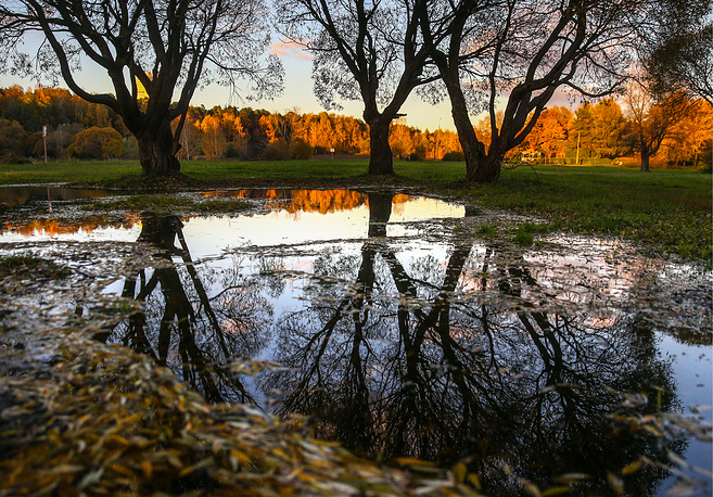 Trees are reflected in a pond in Moscow's park, Russia, October 11