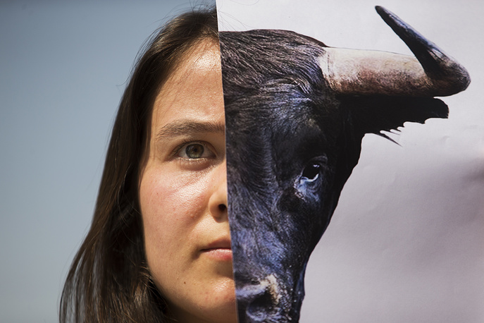 A woman holds up a picture of a bull during a protest against bullfighting in Madrid, June 21