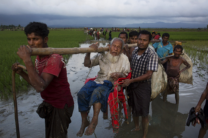 Ethnic Rohingya carry an elderly man and walk through rice fields after crossing over to the Bangladesh side of the border
