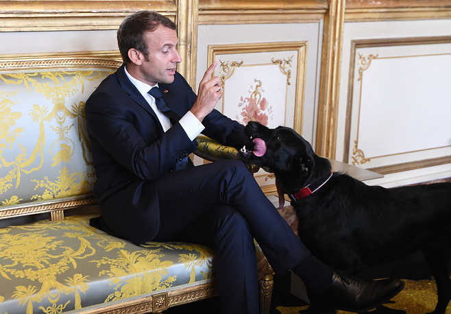 French president Emmanuel Macron gestures towards his dog Nemo at the Elysee presidential Palace in Paris, France, 2017