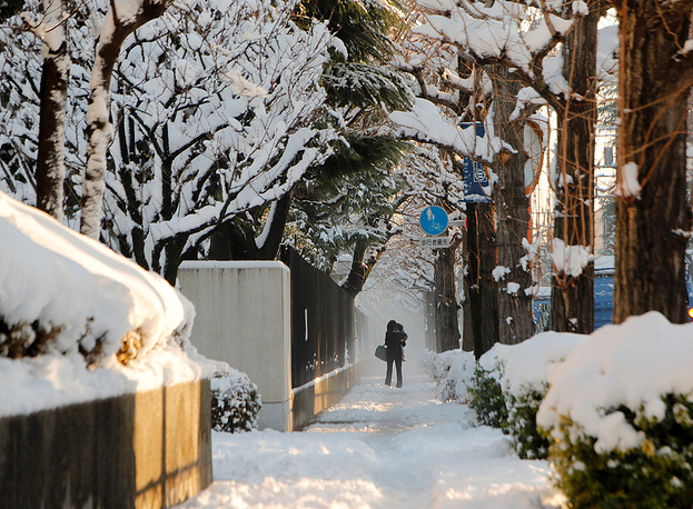 The snowfall in Tokyo was the heaviest in four years