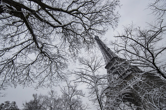 Snow blankets trees near the Eiffel Tower, in Paris, Frence, February 7