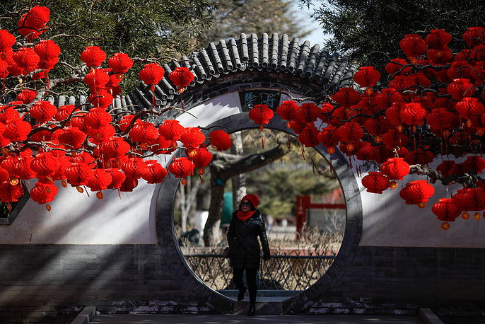 A woman walks past red lanterns hanging from trees to celebrate the upcoming Chinese Lunar New Year at Ditan Park in Beijing, China
