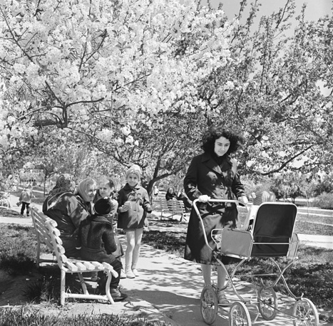 Young mother pushing stroller in a park in Apsheron, Azerbaijan SSR, 1979