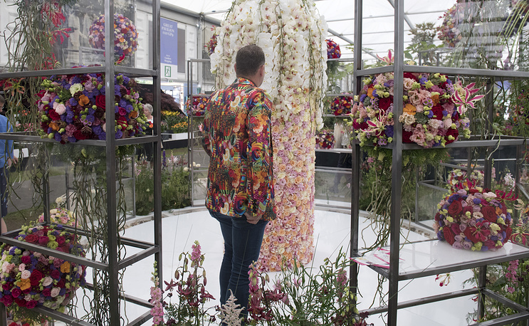 A visitor looks at a floral display at the RHS Chelsea Flower Show