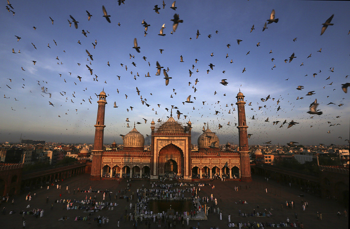 Pigeons fly past as Muslims gather to offer Eid al-Adha prayers at Jama Masjid in New Delhi, India
