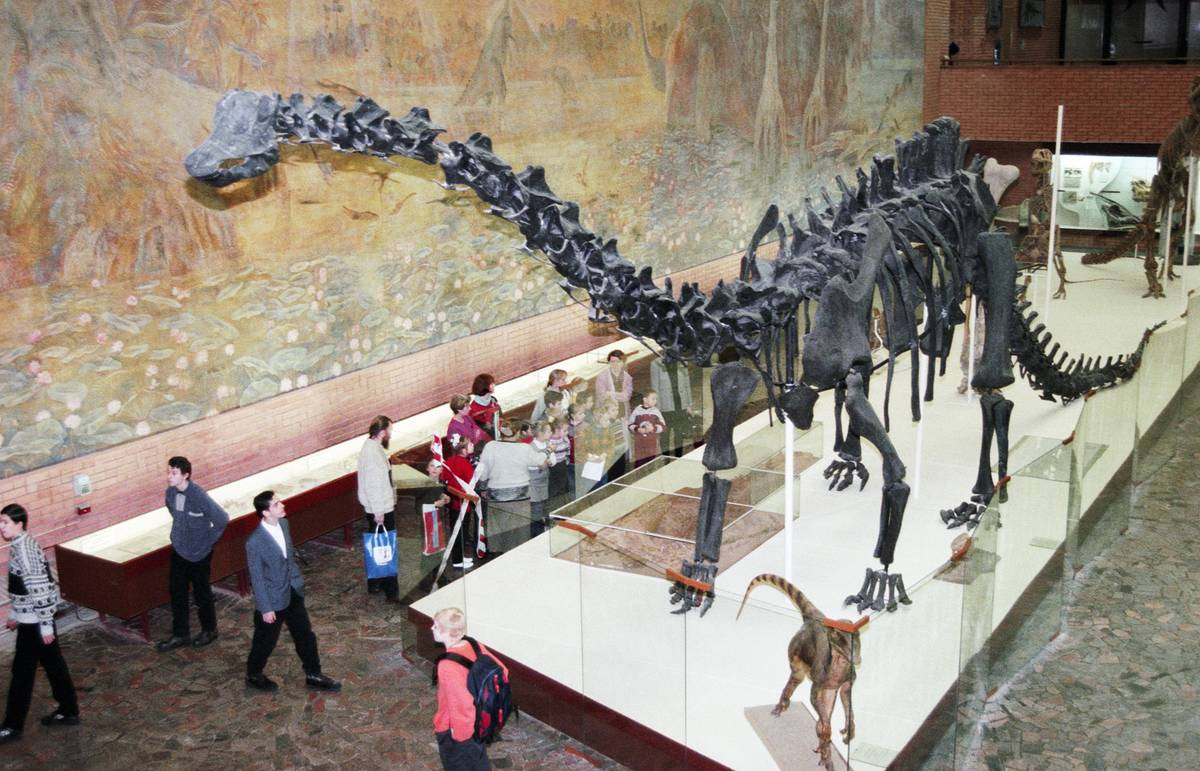 Paleontologists find Jurassic Park's traces in Yakutia