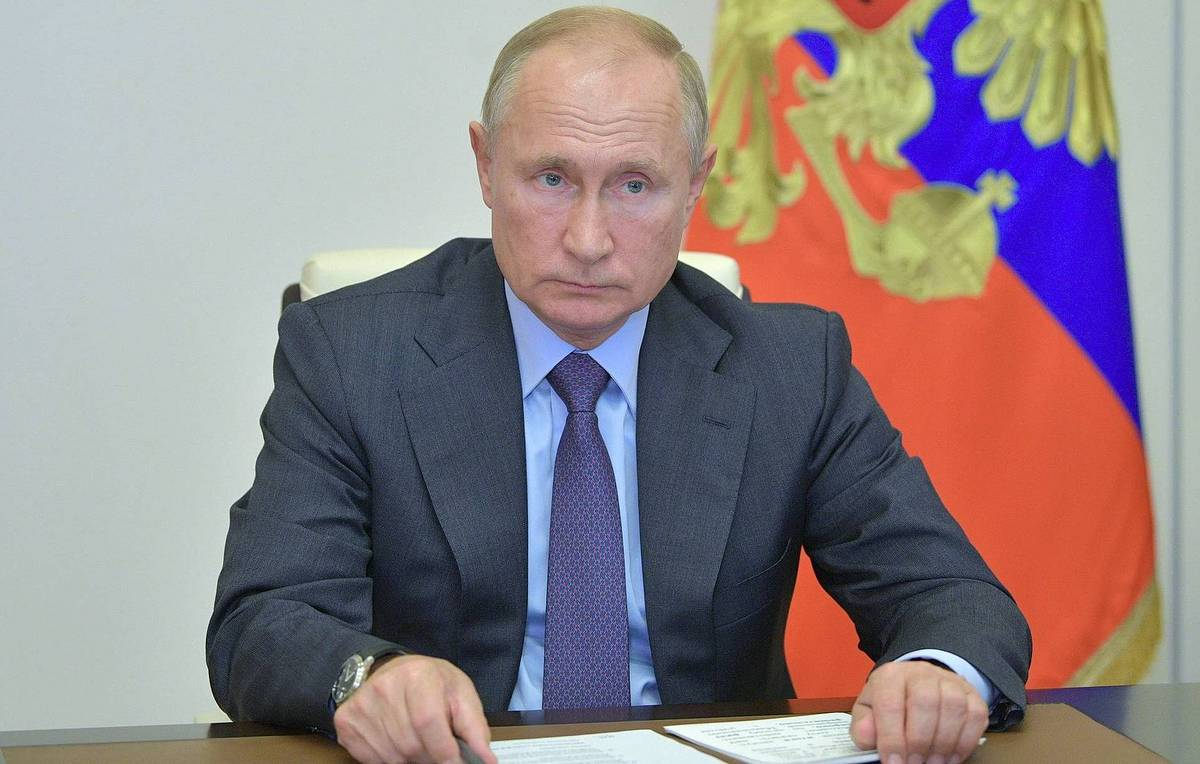 Putin instructs government to stop uncontrolled export of unprocessed timber